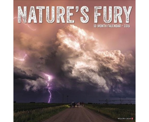 Nature's Fury 2019 Calendar -  (Paperback) - image 1 of 1