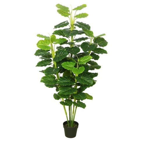 Artificial Fresh Philodendron with Pot Green - Vickerman - image 1 of 1