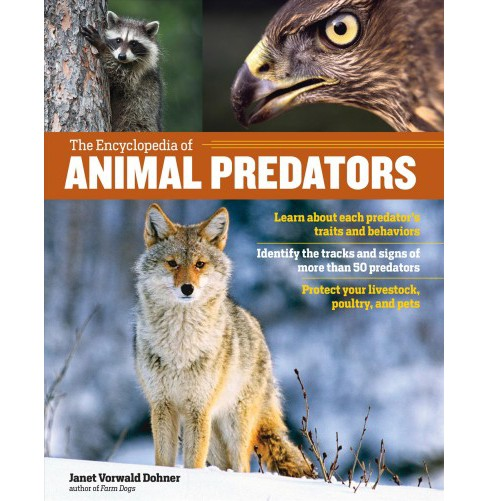 Encyclopedia of Animal Predators : Learn About Each Predator's Traits and Behaviors; Identify the Tracks - image 1 of 1