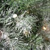 """Northlight 30"""" Prelit Frosted Arctic Mist Pine Artificial Christmas Wreath - Clear Lights - image 2 of 2"""