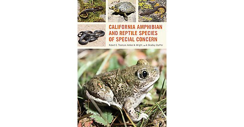 California Amphibian and Reptile Species of Special Concern (Paperback) (Robert C. Thomson & Amber N. - image 1 of 1