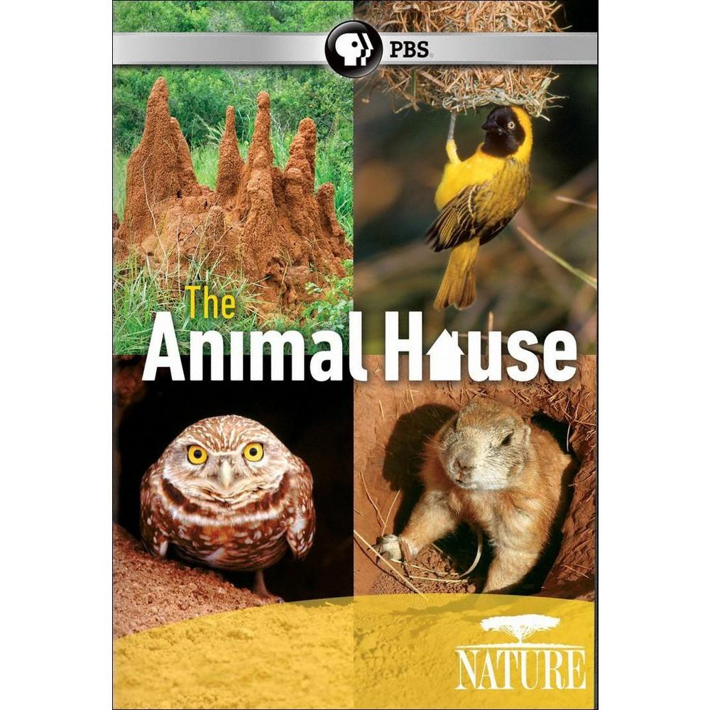 Nature:Animal House (Dvd)