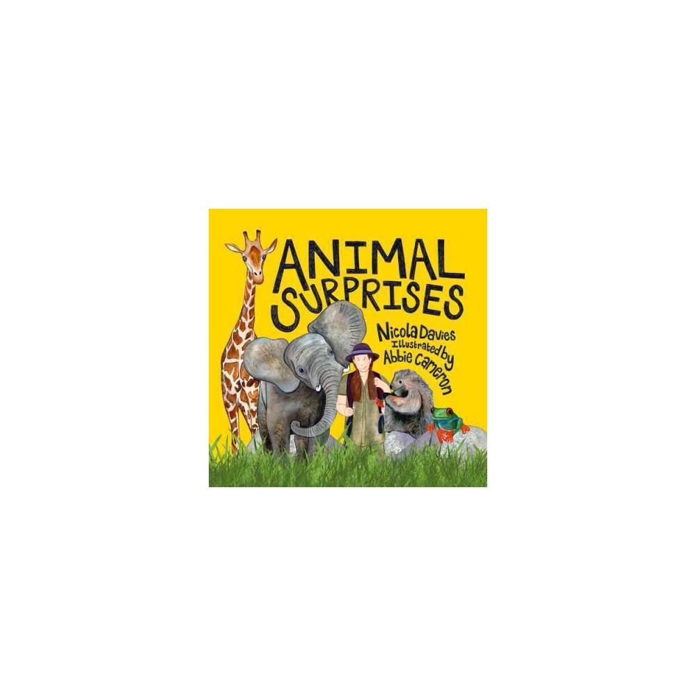 Animal Surprises (Hardcover) (Nicola Davies)