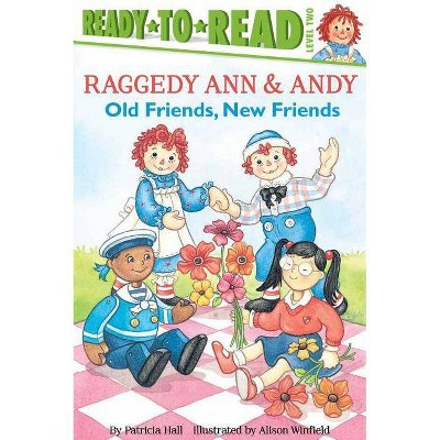 Old Friends, New Friends - (Raggedy Ann) by  Patricia Hall (Paperback)