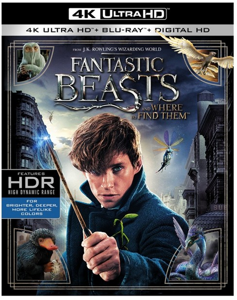 Fantastic Beasts and Where to Find Them (4K + Blu-Ray + Digital) - image 1 of 1