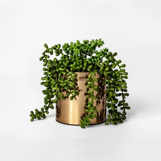 """7"""" x 6.5"""" Artificial String of Pearls Succulent in Pot Gold - Project 62™"""