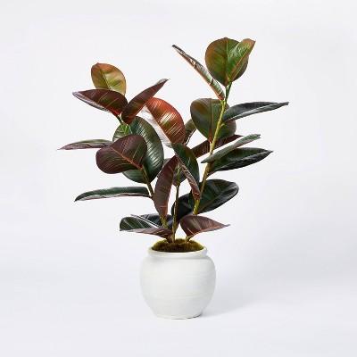 "6"" x 4.5"" Artificial Rubber Plant in Ceramic Pot Purple - Threshold™ designed with Studio McGee"