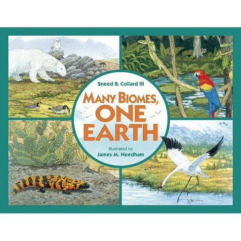 Many Biomes, One Earth - by  Sneed B Collard (Paperback) - image 1 of 1