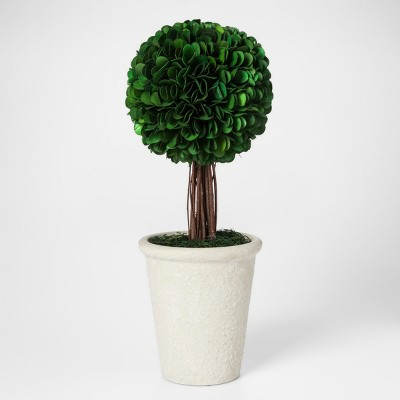 Palm Lily Topiary Large - Smith & Hawken™