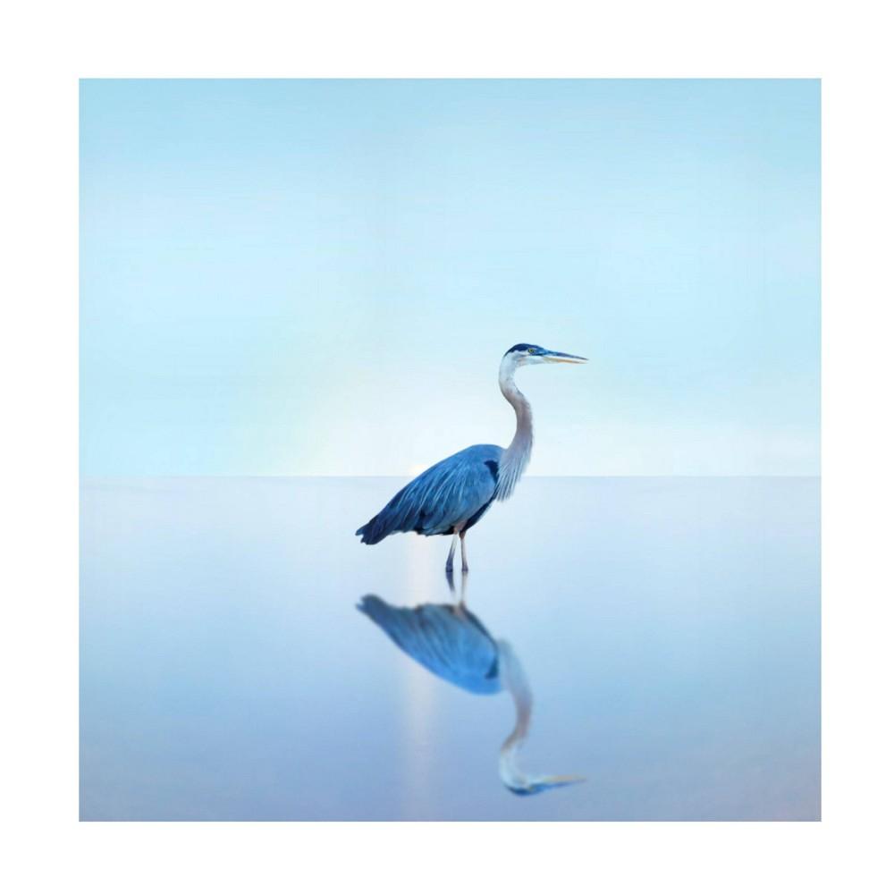 35 34 X 35 34 James Mcloughlin 39 Beachscape Heron Ii 39 Unframed Wall Canvas Trademark Fine Art