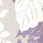 Cream/Purple