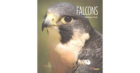 Falcons (Reprint) (Paperback) (Melissa Gish) - image 1 of 1
