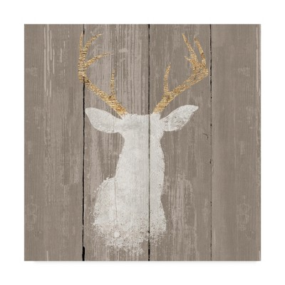 24 X24  Wellington Studio  Precious Antlers I  Canvas Art - Trademark Fine Art