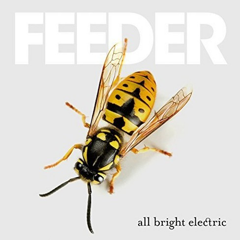 Feeder - All Bright Electric (Vinyl) - image 1 of 1