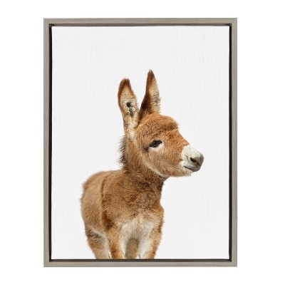 Kate & Laurel 24 x18  Sylvie Baby Burro Animal Print Portrait By Amy Peterson Framed Wall Canvas Gray