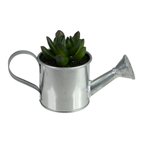 """Northlight 4"""" X Pachyveria Succulent in Water Can Artificial Potted Plant - Green/Silver - image 1 of 3"""
