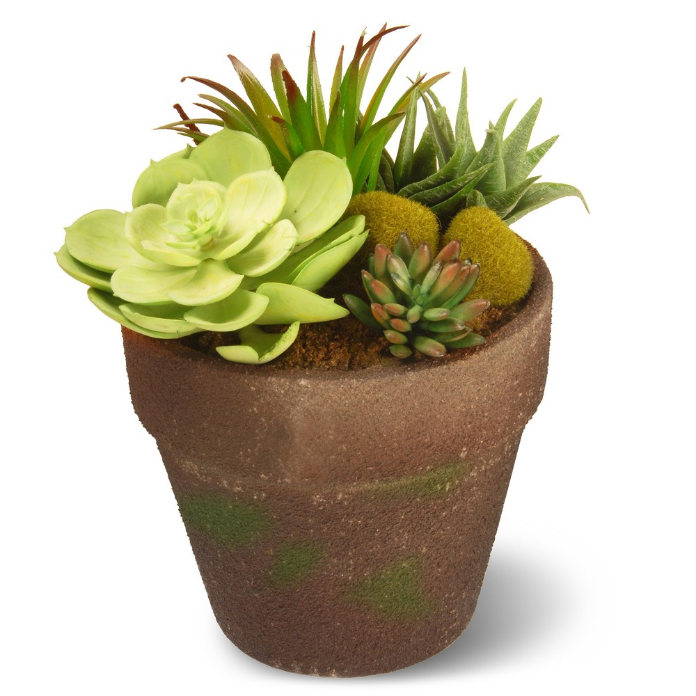 Garden Accents Artificial Succulent Plant Green 8 National