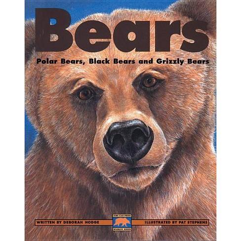 Bears - (Kids Can Press Wildlife) by  Deborah Hodge (Paperback) - image 1 of 1
