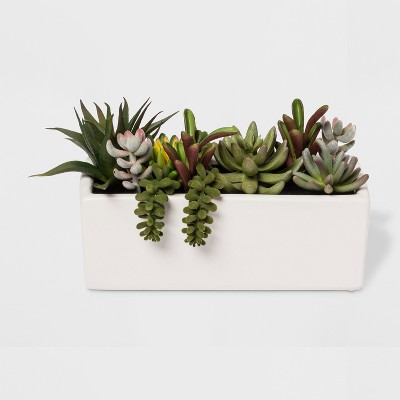 Faux Succulent Plants in White Planter - Project 62™