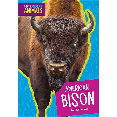 American Bison - (North American Animals) by  Jill Sherman (Paperback) - image 1 of 1