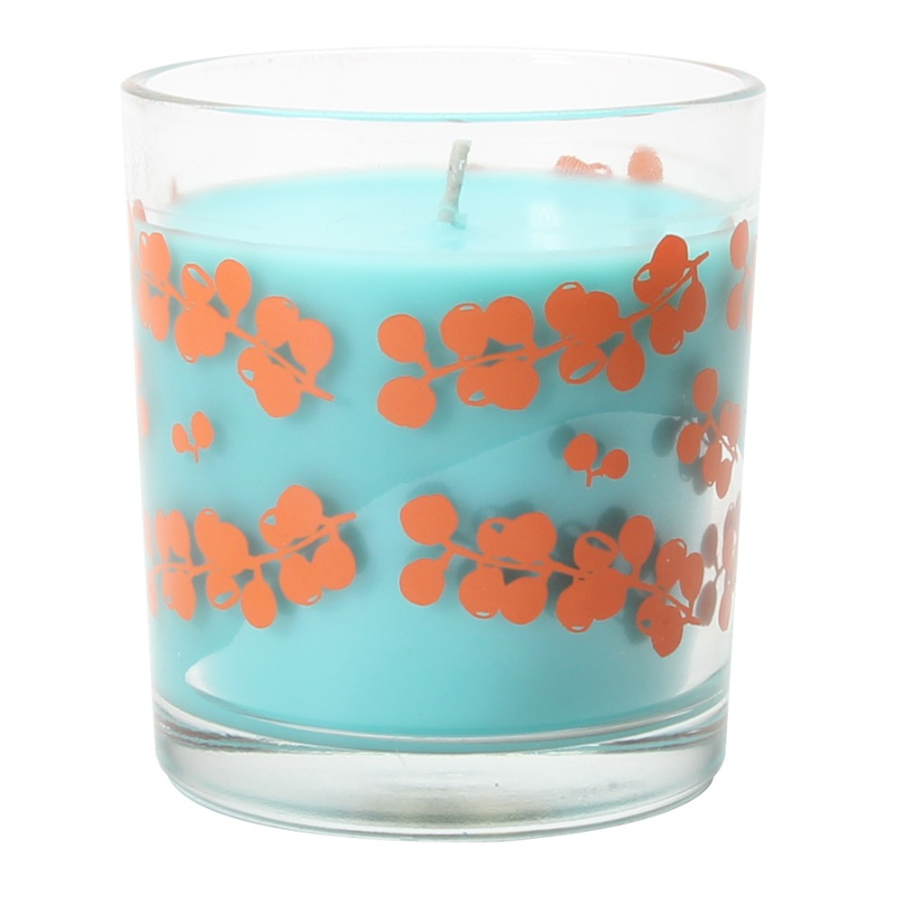 4.9oz Glass Container Candle Agave Aloe, Orange