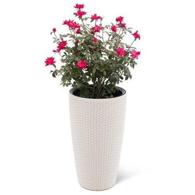 Weave Self-Watering Round Tall Planter, 12-1/2 Inch - Gardener's Supply Company