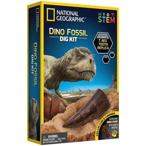 National Geographic Dino Fossil Dig Kit - image 1 of 4