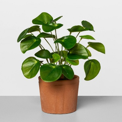 Faux Pilea Potted Plant - Hearth & Hand™ with Magnolia