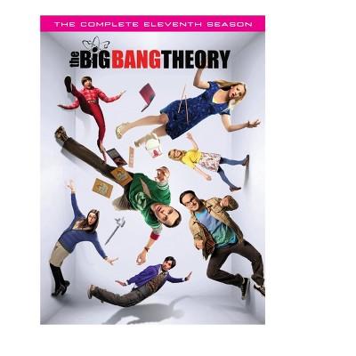 The Big Bang Theory: Season 11 (DVD)