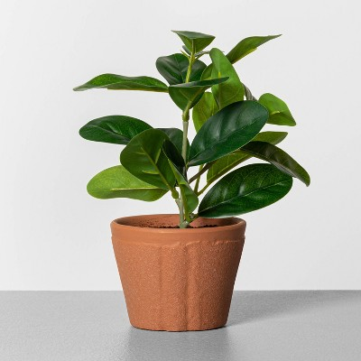 """8"""" Faux Lemon Potted Plant - Hearth & Hand™ with Magnolia"""