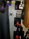 Guest review image 2 of 4, zoom in