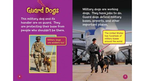 Hero Military Dogs (Paperback) (Jon M. Fishman) - image 1 of 1