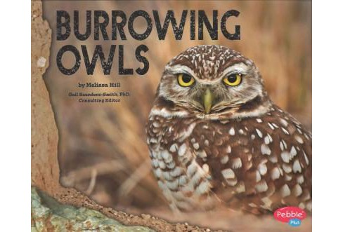 Burrowing Owls (Paperback) (Melissa Hill) - image 1 of 1