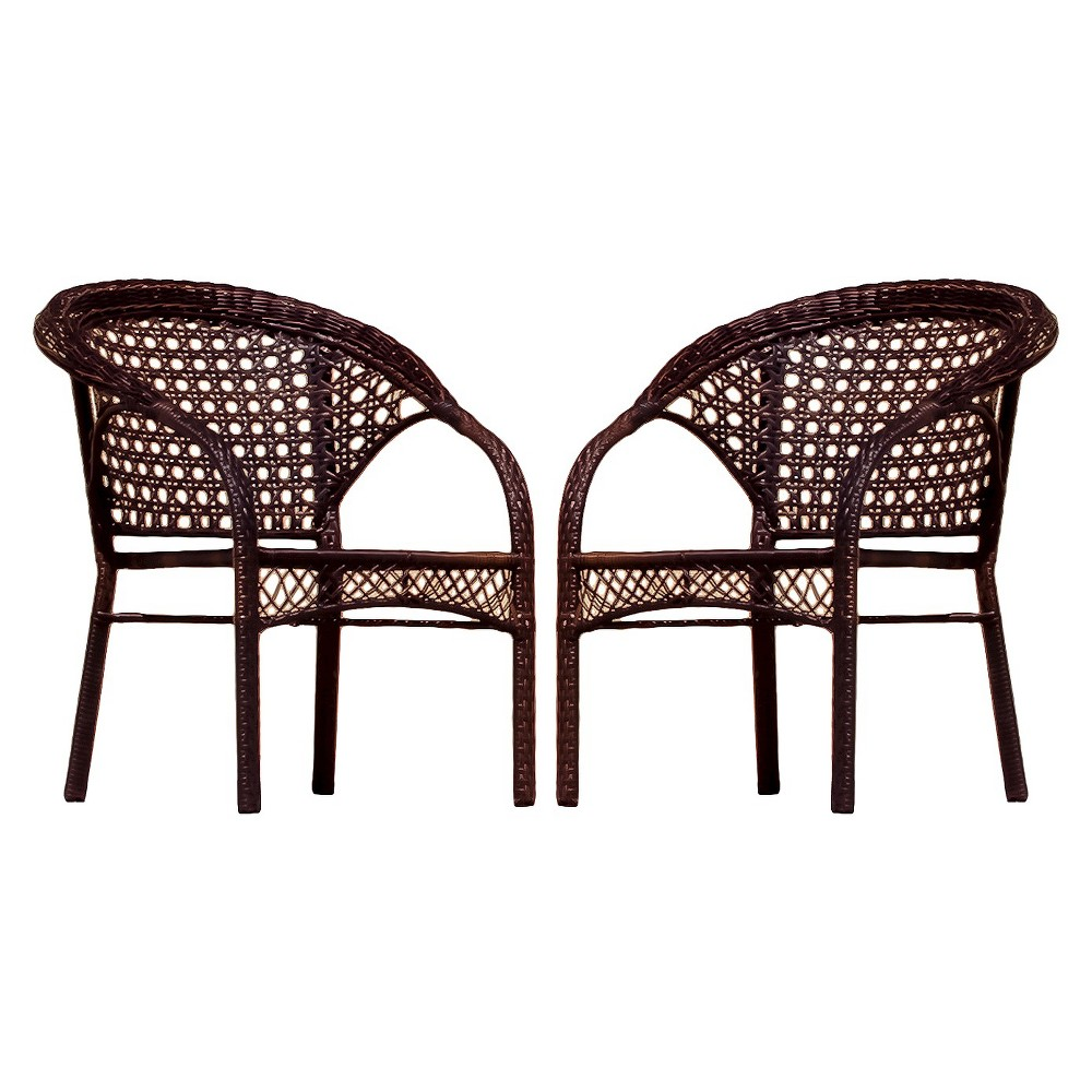 Maria Set of 2 Wicker Fan Back Patio Chairs - Brown - Christopher Knight Home