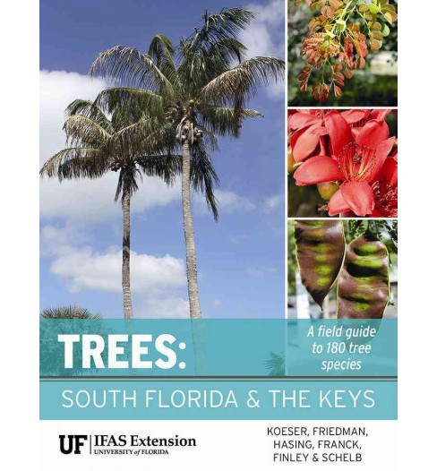 Trees : South Florida and the Keys (Paperback) (Andrew K. Koeser & Melissa H. Friedman & Gitta Hasing & - image 1 of 1