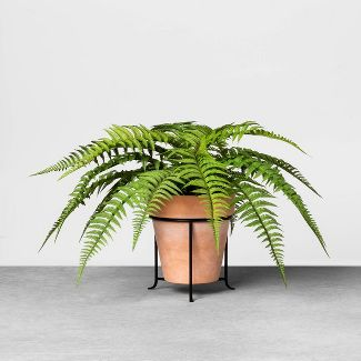 """20"""" Faux Fern Potted Plant with Stand - Hearth & Hand™ with Magnolia"""