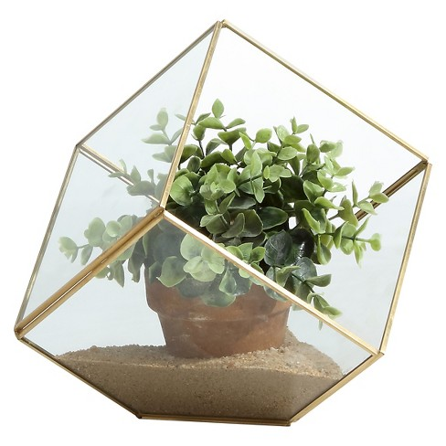6 5 Cube Shaped Glass Terrarium Clear Brass Danya B Target