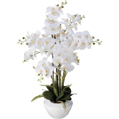 """Dahlia Studios White Phalaenopsis Orchid 29"""" High Faux Floral Arrangement"""