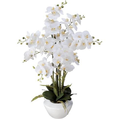 "Dahlia Studios White Phalaenopsis Orchid 29"" High Faux Floral Arrangement - image 1 of 4"