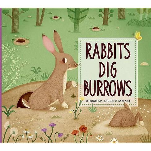 Rabbits Dig Burrows - (Animal Builders)by  Elizabeth Raum (Paperback) - image 1 of 1