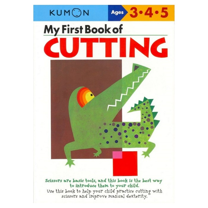 My First Book Of Cutting (Original) (Paperback) by Shinobu Akaishi - image 1 of 1