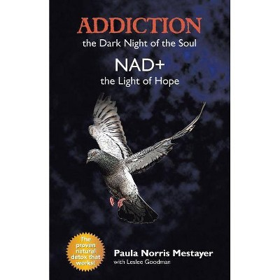 Addiction - by  Paula Norris Mestayer (Paperback)