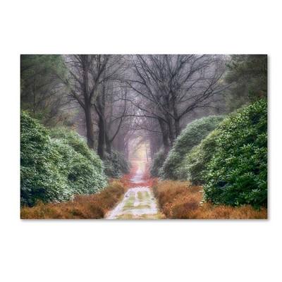 "22"" x 32"" Rhododendron Lane by Cora Niele - Trademark Fine Art"