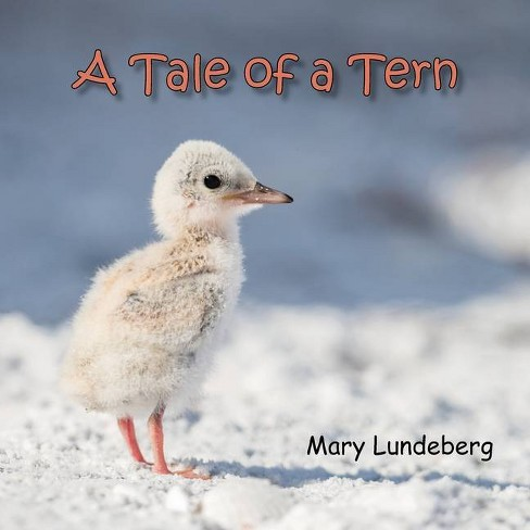 A Tale of a Tern - by  Mary A Lundeberg (Paperback) - image 1 of 1