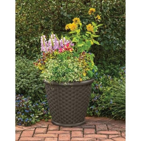 18 Sonora Decorative Planter 2 Pack Brown Suncast Target
