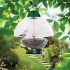 Droll Yankees Big Top Bird Feeder - Green - image 2 of 3