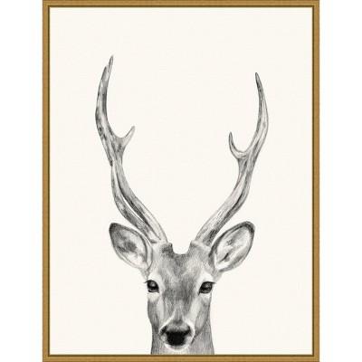"18"" x 24"" Animal Mug IV Deer by Victoria Borges Framed Canvas Wall Art Gold - Amanti Art"