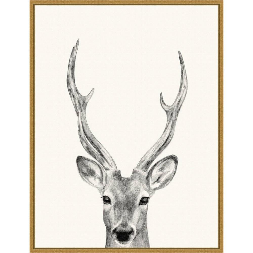 18 34 X 24 34 Animal Mug Iv Deer By Victoria Borges Framed Canvas Wall Art Gold Amanti Art