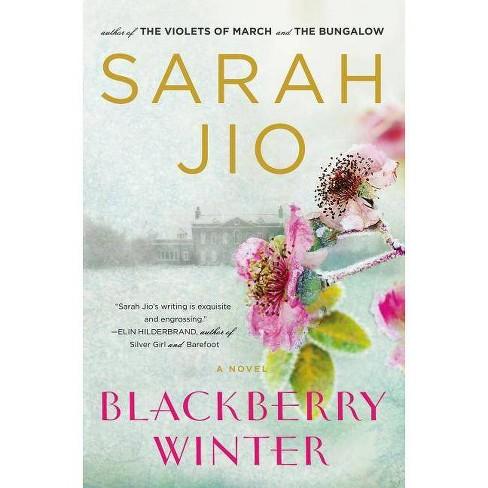 Blackberry Winter - by  Sarah Jio (Paperback) - image 1 of 1