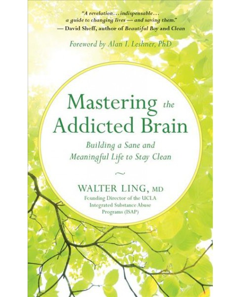 Mastering the Addicted Brain : Building a Sane and Meaningful Life to Stay Clean (Unabridged) (CD/Spoken - image 1 of 1